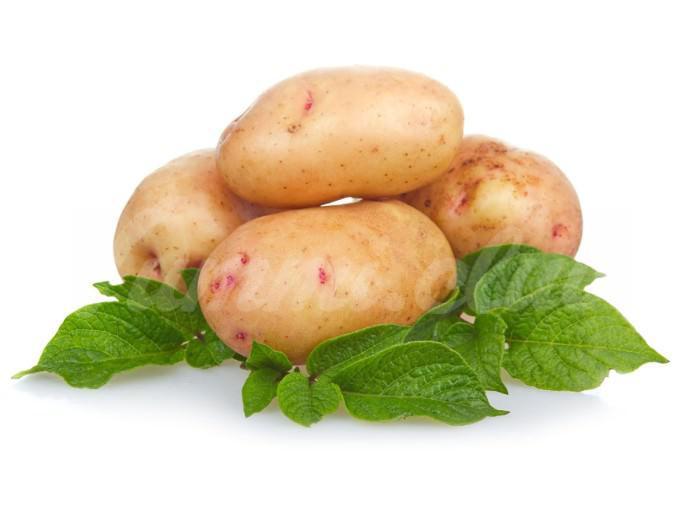 На фото ConAgra Foods пытается вывести сорт сладкого картофеля