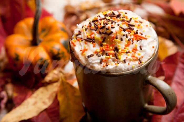 На фото Тыквенный горячий шоколад