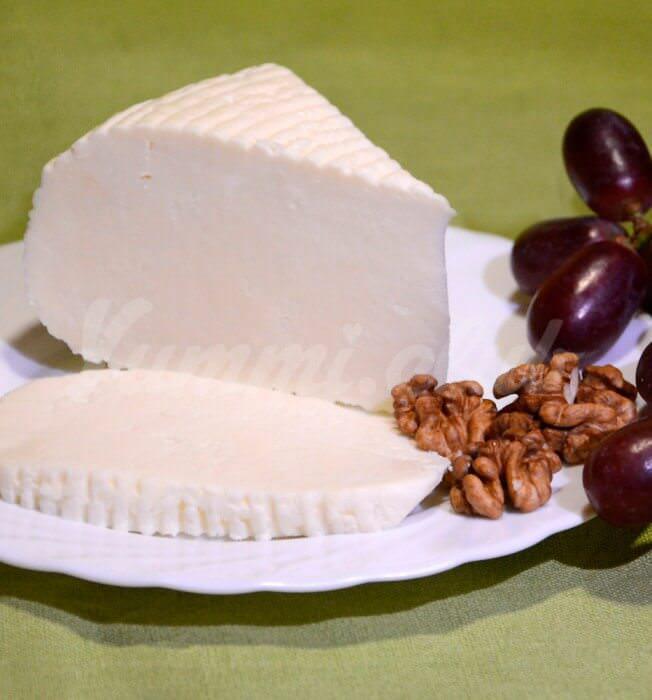 На фото Адыгейский сыр в микроволновке