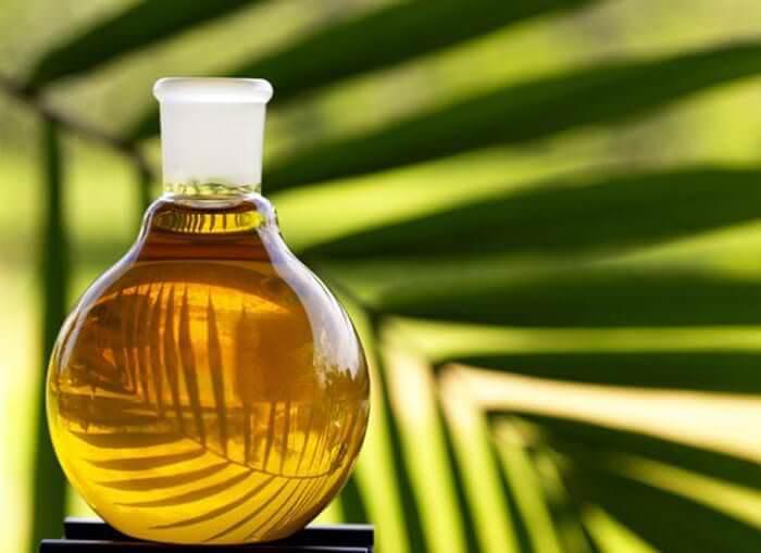 На фото Польза и вред пальмового масла