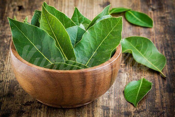 На фото Пищевая ценность лаврового листа