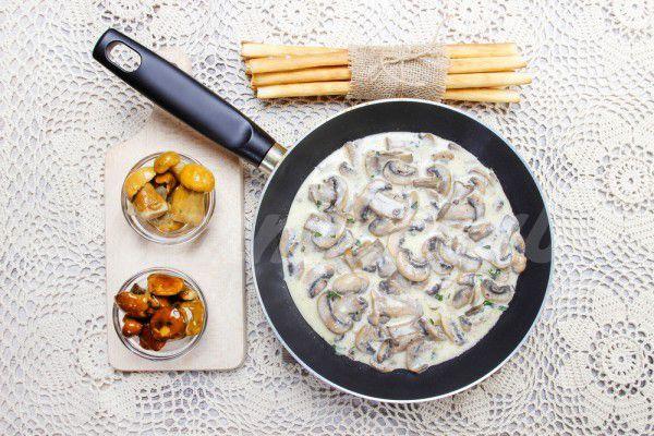 На фото Грибной соус из шампиньонов