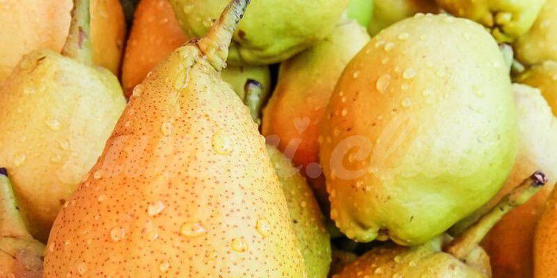 На фото Малоизвестные полезные свойства груш!