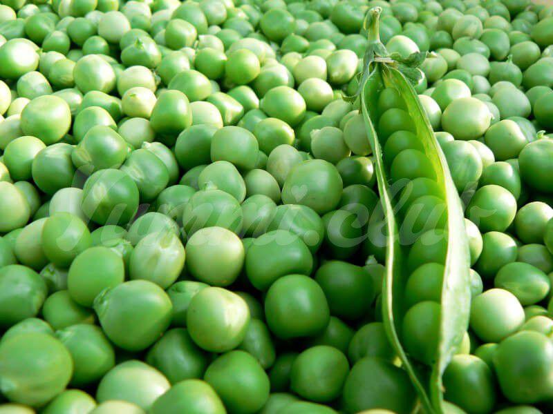 На фото Полезные свойства зелёного гороха
