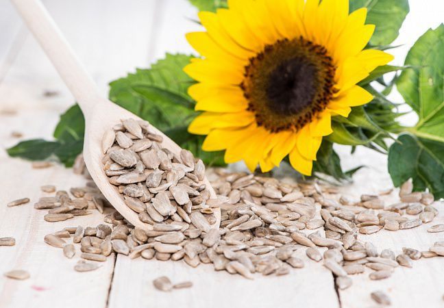 На фото Подсолнечные семена: клетчатка, белок, витамин Е