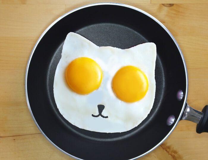 На фото Мошенники собрали 73 тыс. $ на форму для яичницы в виде кота