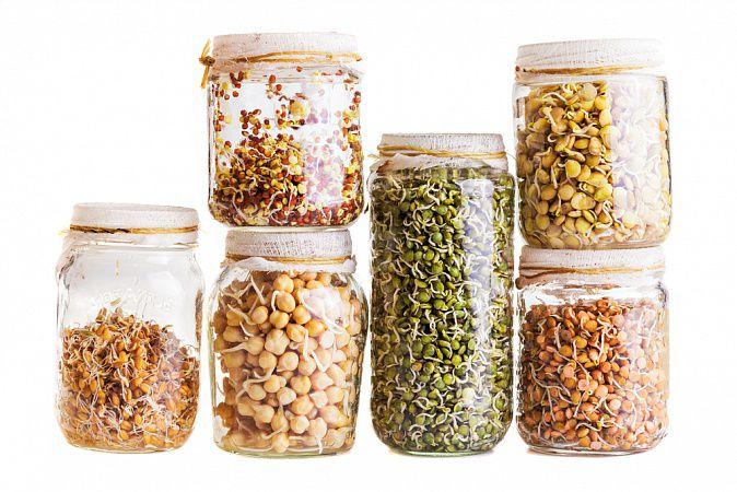 На фото «Живые» орехи и семена (замачивание и проращивание)