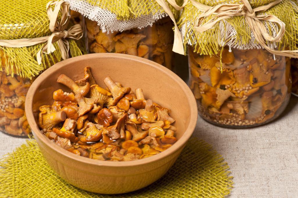 свойства замороженных грибов лисичек руководитель детского дома