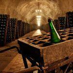 Cколько можно и как правильно хранить шампанское
