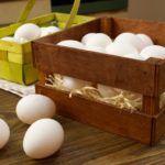 Как хранить яйца правильно и Сколько можно хранить яйца в холодильнике