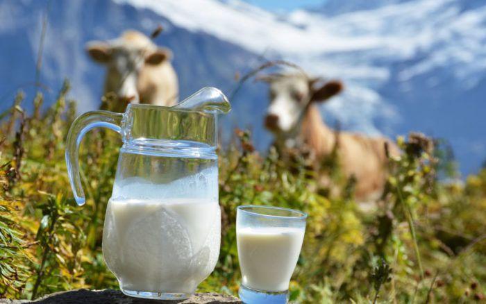 На фото В чем отличие органического молока от промышленного?