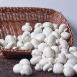 Как сохранить шампиньоны свежими и полезными: способы хранения и приготовления