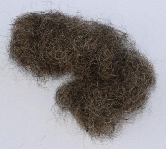 Свиная щетина и человеческие волосы